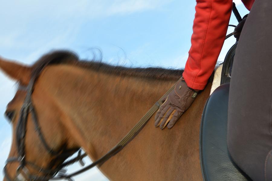 Procederen over bokkend paard